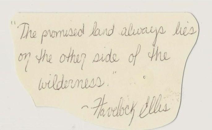 wilderness 001